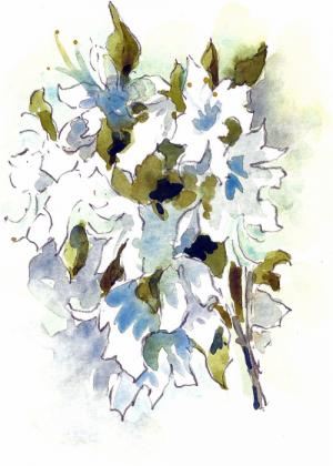 betty-brown-artist-flowers-21